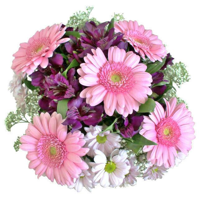 Fialová kytica s ružovými gerberami