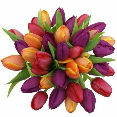 Kytica z fialových a oranžových tulipánov