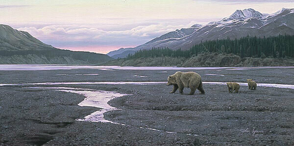 New Territory - Grizzly & Cubs