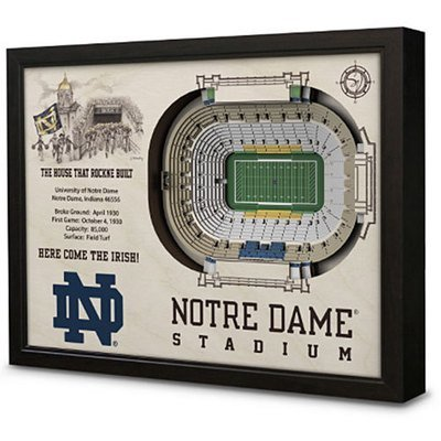 Notre Dame Stadium View 3D Model Wall Art