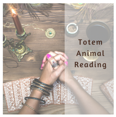 Totem Animal Reading