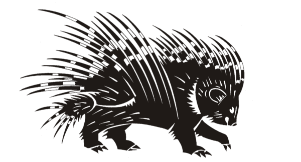 Porcupine Basins