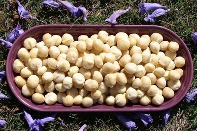 16oz Macadamia Nuts