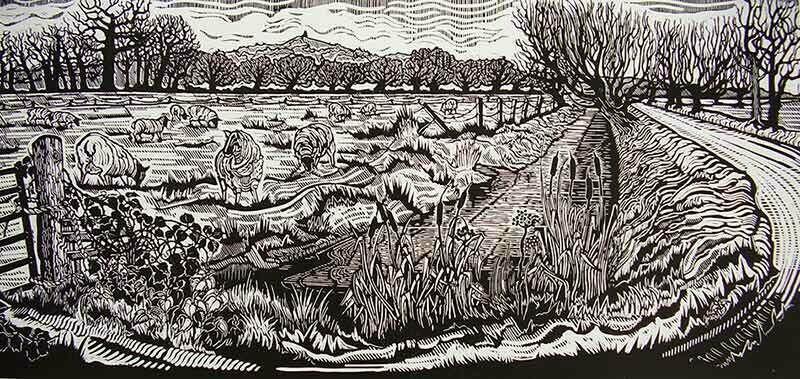 Sheep on Common Moor
