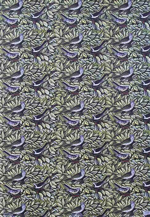 Birds -Wrapping Paper Pack by Angela Harding