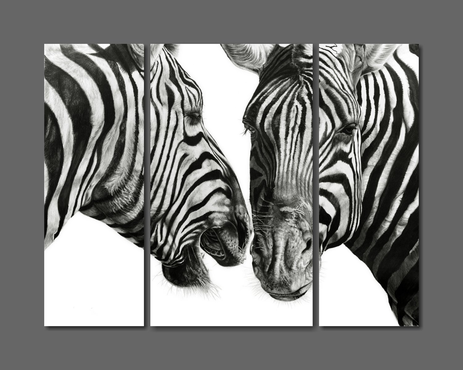 """Zebra Gossip"" 1180mm x 890mm composite print on canvass (Unframed)"