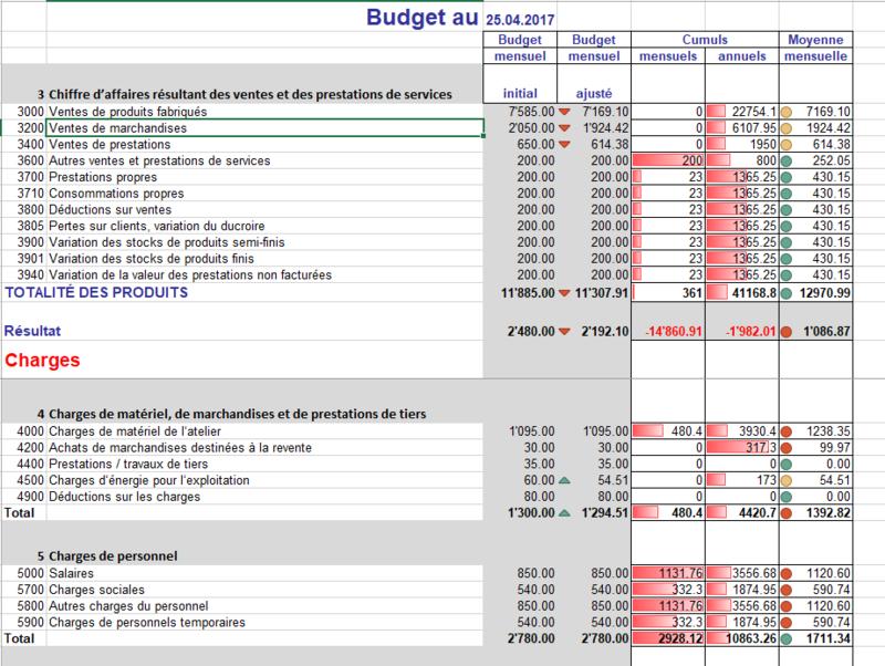 Budget professionnel mensuel (Excel)