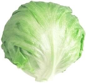 Fresh Salad Greens, Iceberg Lettuce (Single Head)