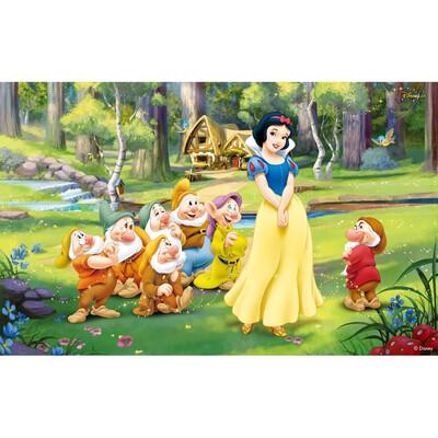 Photography Background Princesses Snow White Newborn Birthday Party Children Backdrops for Photo Studio