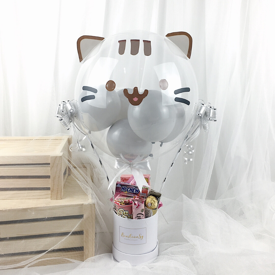 Hot Air Balloon with 3D Pusheen Snack box