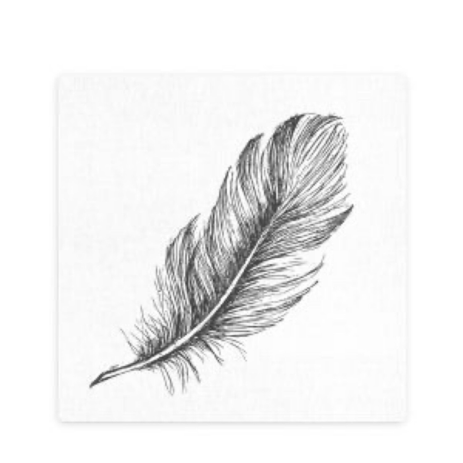 Splosh Feather Print Ceramic Coaster
