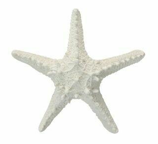 White Poly Starfish OD1320