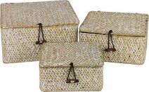 Woven Lidded Basket Set 3