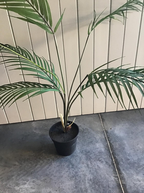 Kwai Palm 51cm - Artificial  Plant