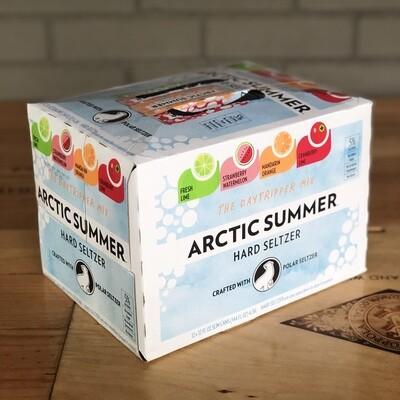 Arctic Summer Hard Seltzer Daytripper Mix Pack (12pk)