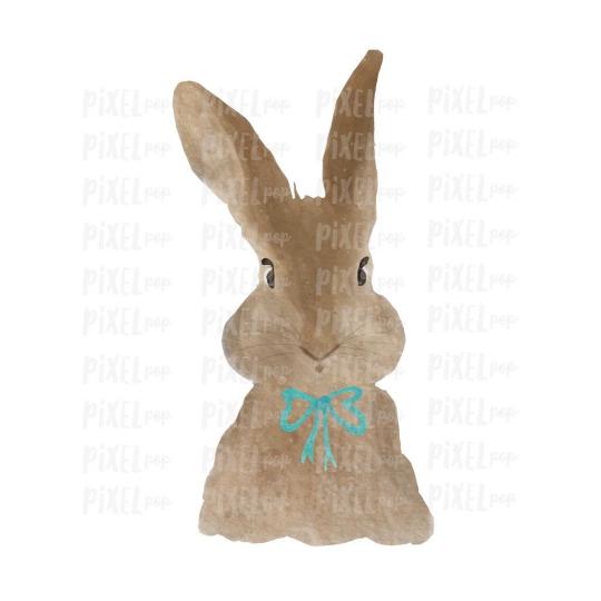 Bunny Rabbit Watercolor Easter Transfer Design PNG   Sublimation Design   Heat Transfer PNG   Digital Download   Printable Art   Clip Art