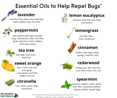 FREE CHART - ESSENTIAL OILS TO HELP REPEL BUGS - INSECTS