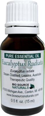 Eucalyptus Radiata Pure Essential Oil