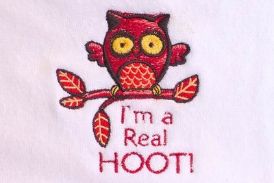 I'm a Real Hoot!! Burp Cloth