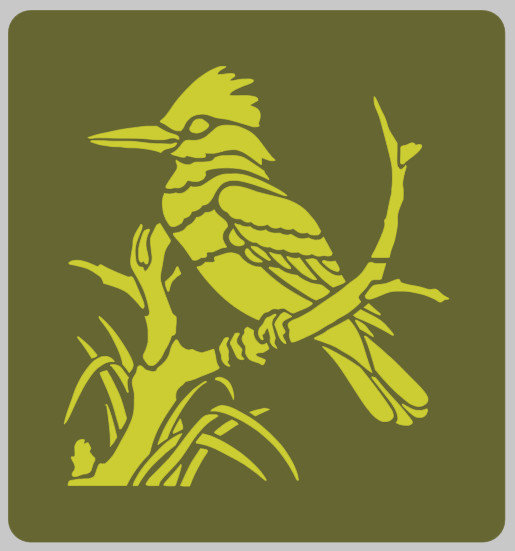 Kookaburra Bird furniture stencil