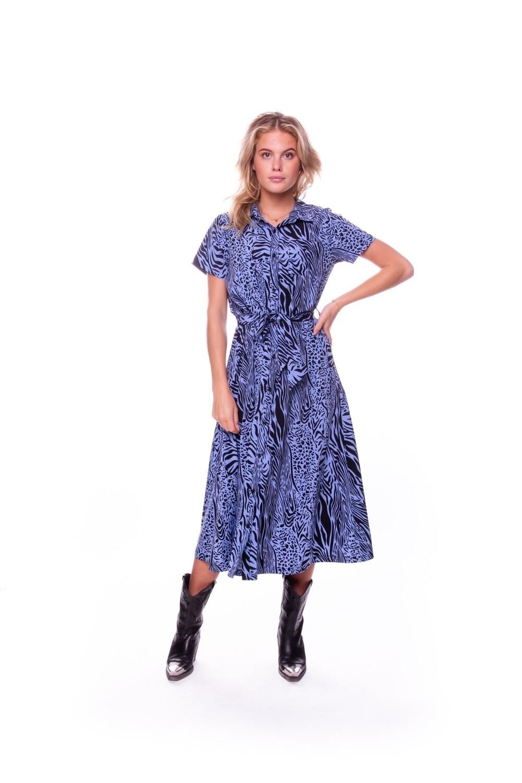 Dalia Zebra Dress