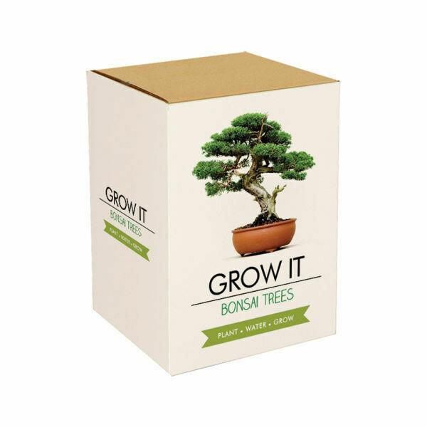 Grow It Bonsai