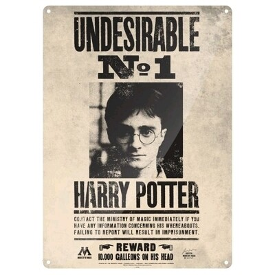 Placa Pared Harry Potter Tin Sign Small (Undesirable No 1)