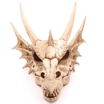Placa Calavera de Dragón Grande