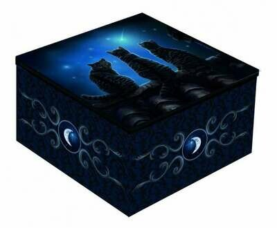 Caja Tres Gatos Negros