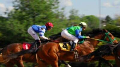 Sponsor A Race for Night at the Races