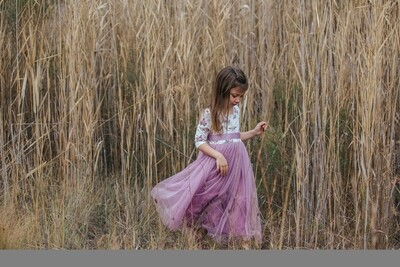 Willow Dress   Mauve