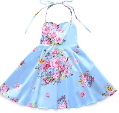 Briar Blue Floral Dress