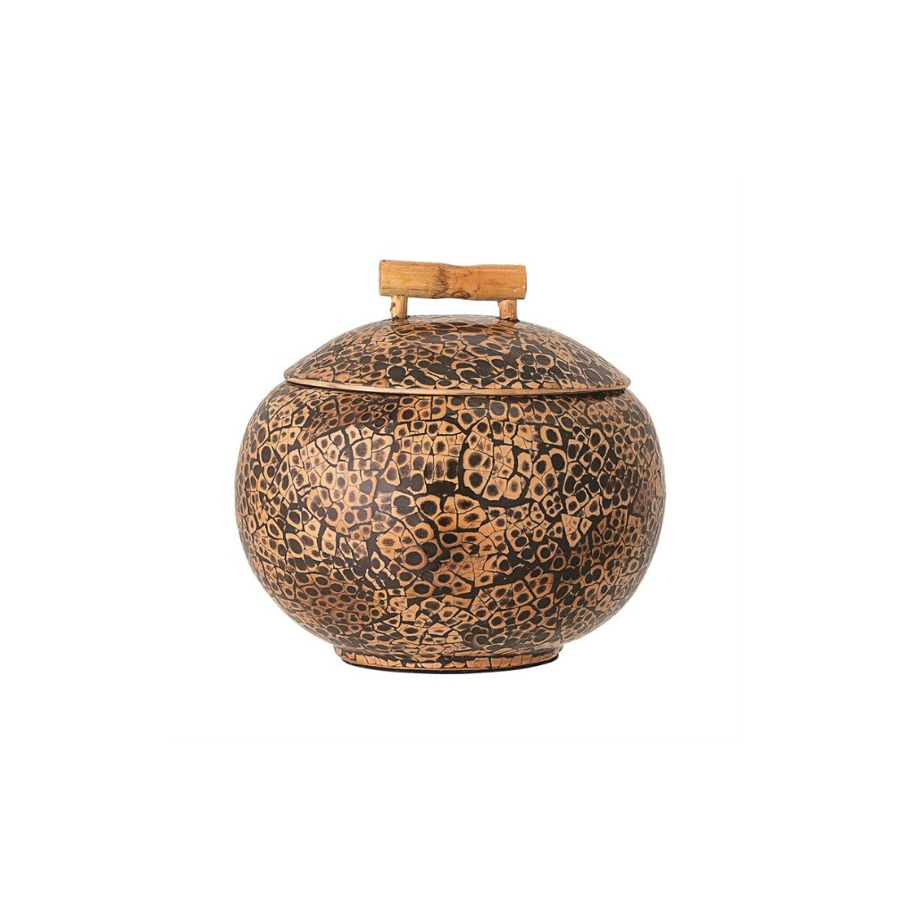 Coconut Shell Container