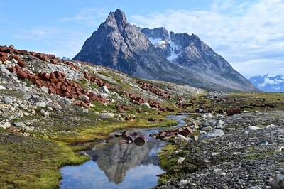 Grönland 2