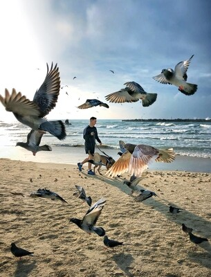 Pigeons Beach Walk
