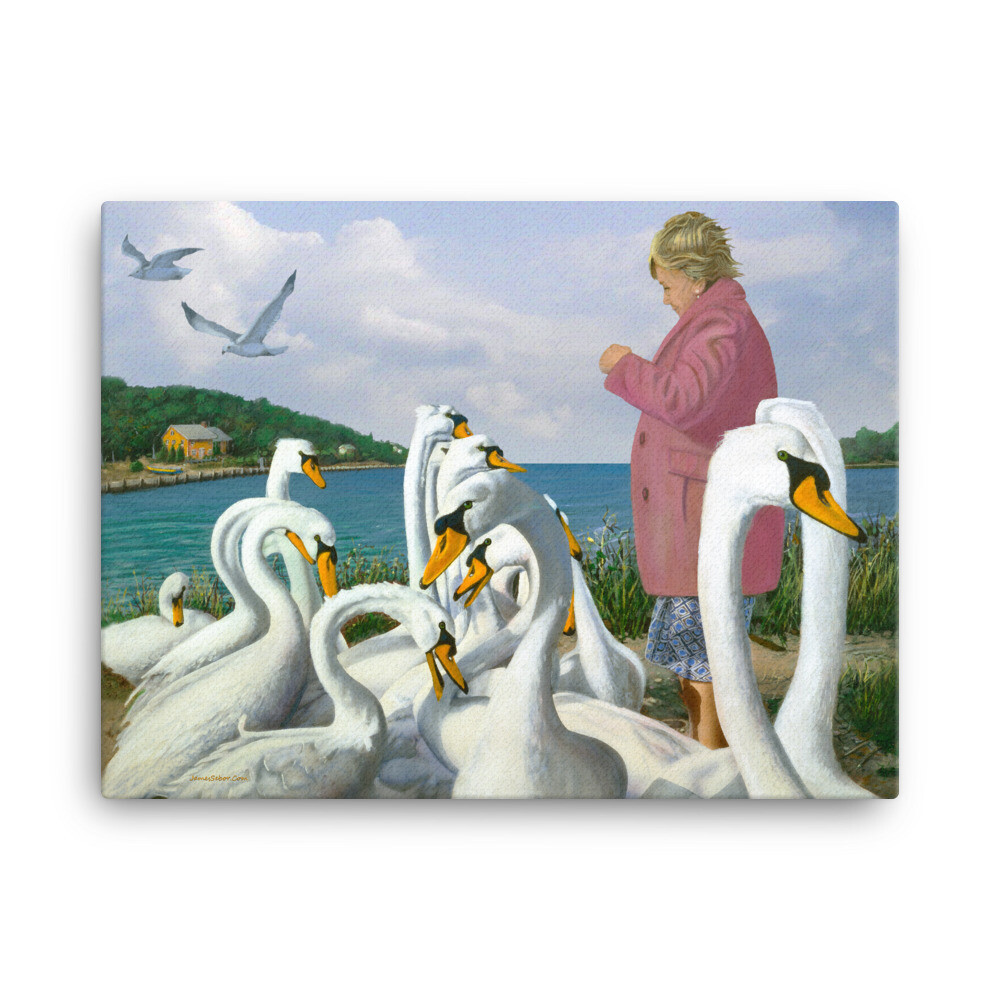 """Feeding Swans"" Canvas Prints"