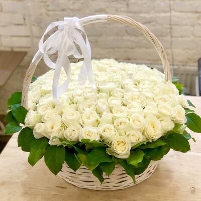 Корзина из 101 белой розы