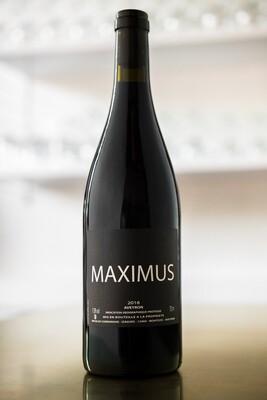 Nicolas Carmarans 'Maximus' (2017)