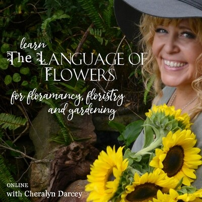 Learn The Language of Flowers