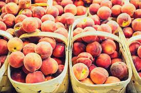 PRE ORDER AUG 4th Peaches 1/2 Bushel Basket (produce)