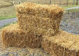 Straw Bale (Full Size) $6.99