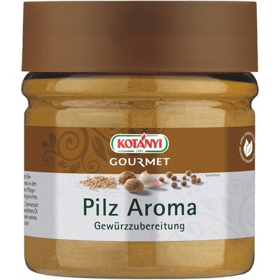 Grosspackung Kotanyi Pilz Aroma 400 ccm