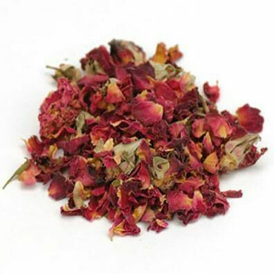 Rose Boutons Purple