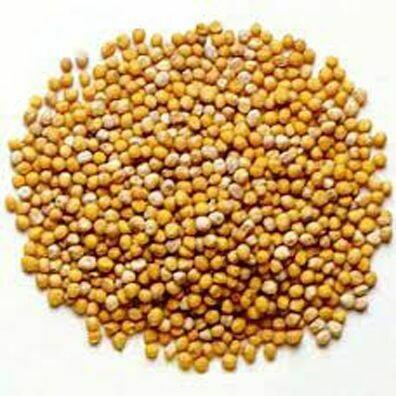 Mustard Seed, Yellow Ground 342