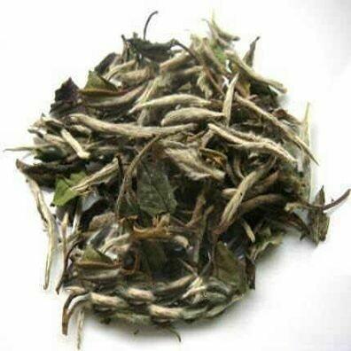 Pai Mutan White Tea