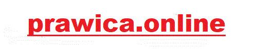 prawica.online - domena dla każdej grupy prawicowej, od najmniejszej po sejmową. Łap, póki dostępna!
