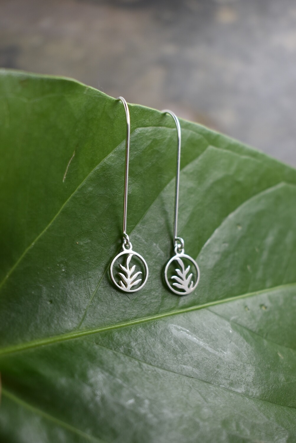 Sterling Silver Fern Leaf Earrings