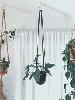 Leather Plant Hanger