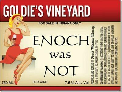 ENOCH WAS NOT