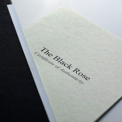 The Black Rose (anon) - Special Limited Edition